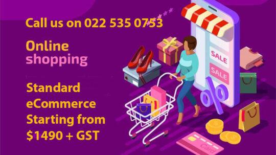 Affordable eCommerce Websites Auckland